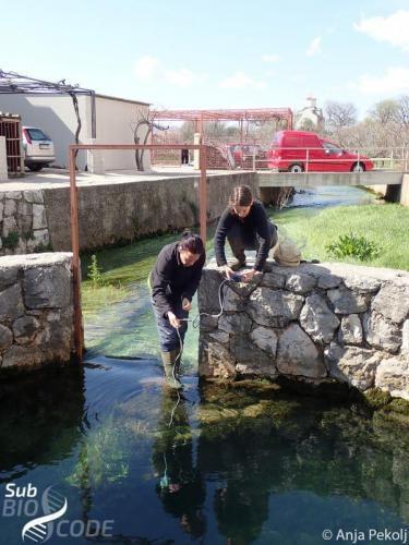 Measuring water parameters at Vrelo Oko in Zazid in Trebinje.