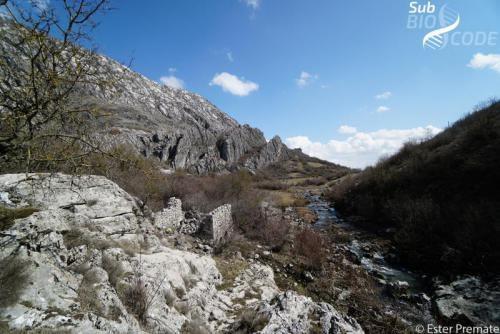 View over Ključko polje.