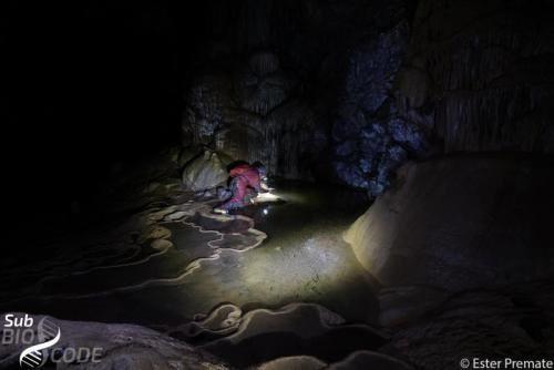 Узорковање малих бескичмењака на воденој површини у пец́ини Мрцине.