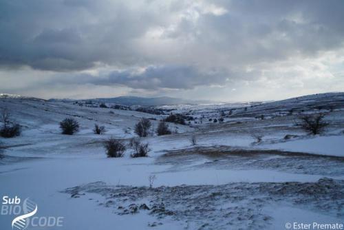 Зимски пејзаж на путу до Драмешине пец́ине.
