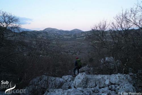 Поглед према аутомобилима након узорковања у пец́инама изнад Гребица.