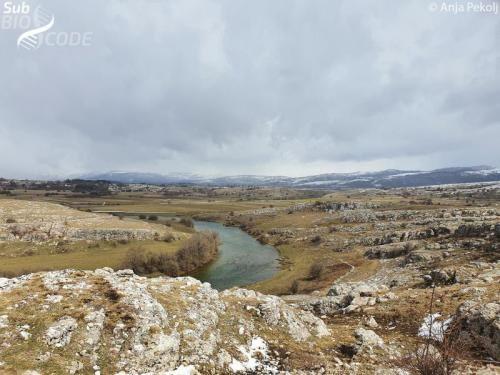 View of Zalomka river that runs along Nevesinjsko polje.